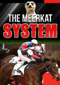 Download The Meerkat System. For Free. Simples!